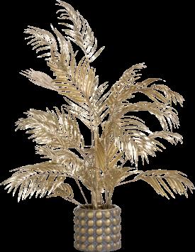 areca palm plant h105cm