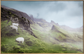 highlands bild 100x70cm