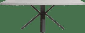 tisch 220 x 100 cm - beton - stern fuss