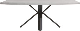 eetkamertafel 220 x 100 cm - beton - sterpoot