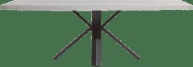table 250 x 100 cm - beton - pied forme etoile