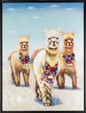 bild alpaca glory - 80 x 100 cm