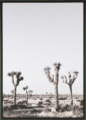 bild nomans land - 74 x 104 cm