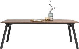 dining table 250 x 100 cm