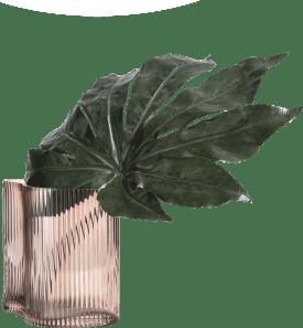 vaas julie small - bruin