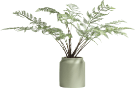 fern plant in plastic pot - 100 cm