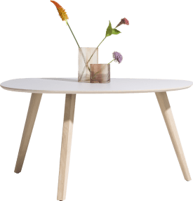 table 150 x 100 cm