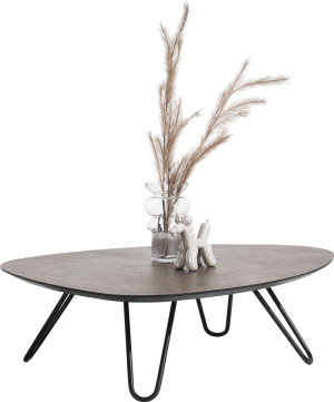 salontafel laag 110 x 88 cm
