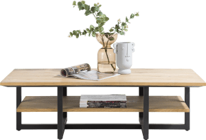 table basse 120 x 60 cm + 1-niche