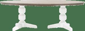 tisch oval 240 x 120 cm
