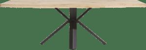 eetkamertafel 250 x 100 cm - hout - sterpoot