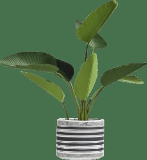sarah planter h25cm