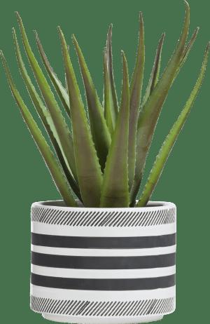 sarah planter h20cm