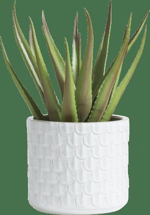 annie planter h23cm