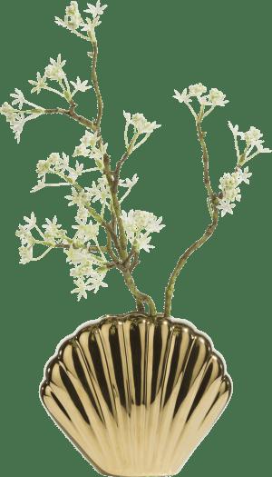 shell vase s h15cm