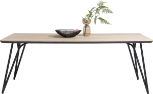 eetkamertafel 240 x 100 cm