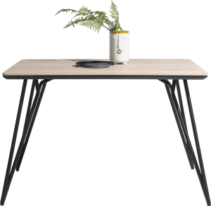 bartafel 140 x 100 cm (hoogte 92 cm)