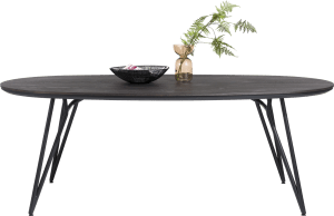 table ovale 220 x 120 cm