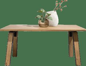 table 180 x 100 cm