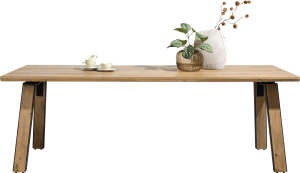 table 240 x 100 cm