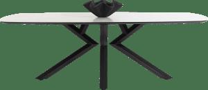 eetkamertafel ovaal - 240 x 110 cm - centrale poot