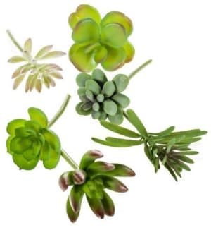 succulent set of 6 artificial flowers