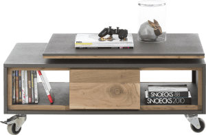 table basse 100 x 60 cm + 2-niches avec plateau tournant