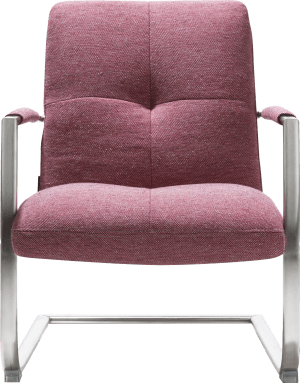 fauteuil met frame in rvs of vintage