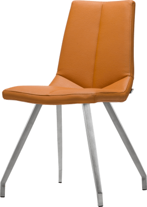 chaise pieds inox