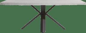 table 220 x 100 cm - beton - pied forme etoile