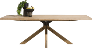 table 230 x 105 cm - pied central
