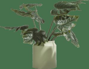 vaas / pot leo large - hoogte 28,5 cm