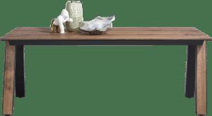 table 230 x 100 cm