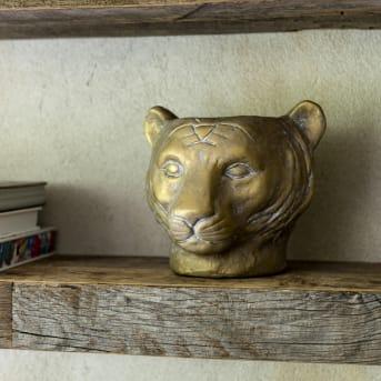 Stattlicher Löwenkopf