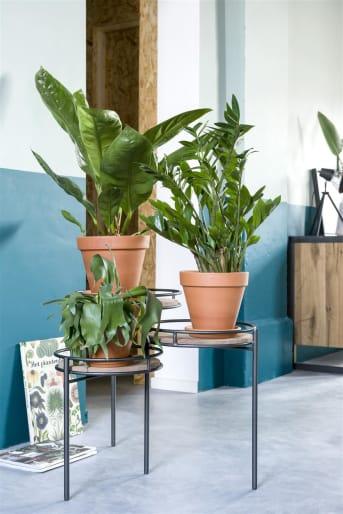"""Bijzettafel """"INDIRA"""" van COCO maison is een set van 3 bijzettafels in één. De tafels kunnen naar wens in- en uit elkaar geschoven worden. Ideaal voor als je een meubel zoekt dat weinig ruimte inneemt en snel extra tafelblad kan bieden. De bijzettafels zijn voorzien van een houten blad en zwart stalen frame."""