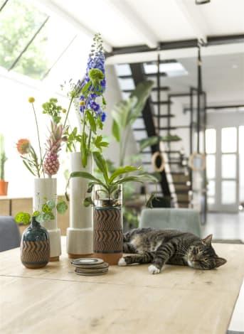 Kandelaar LENA van COCO maison heeft een beetje Afrikaanse/Etnische looks, die perfect passen binnen de interieurtrend van nu: Bohemian. Geef je huis dus een snelle nieuwe boho touch met deze kandelaar! LENA is gemaakt van keramiek en glas, zodat je kaars of waxinelichtje goed beschermd is.