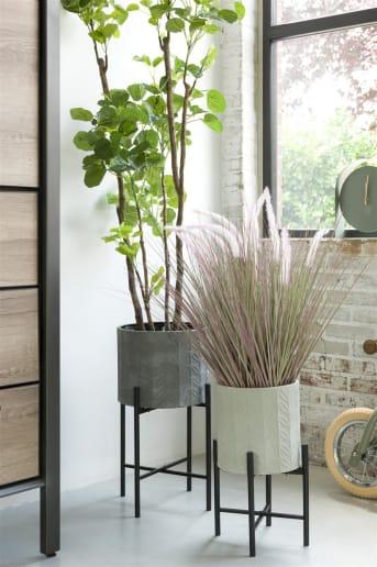 Groen is huis is altijd een goed idee! En daar horen mooie bloempotten bij. Met deze set van twee bloempotten CARINA van COCO maison zit je zeker goed. Ze zijn 46 cm en 58 cm hoog. De CARINA bloempotten zijn grijs van tint en staan in twee stoere, zwarte houders. Leuk voor in de vensterbank of op een dressoir.