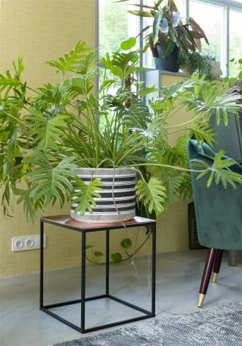 Bloempot SARAH LARGE van COCO maison is een mooie, basic bloempot van grijs keramiek met horizontale zwart/witte strepen. SARAH LARGE is 25 cm hoog en goed te combineren met de kleinere variant die een hoogte heeft van 20 cm. Leuk voor op de vensterbank met een mooie, groene plant erin!