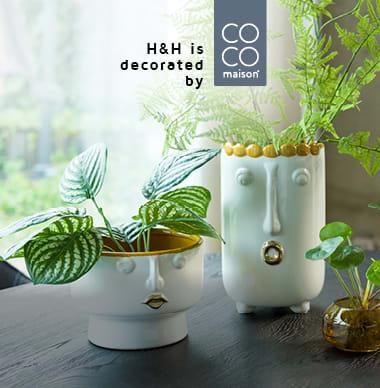 Commandez directement en ligne chez COCO maison